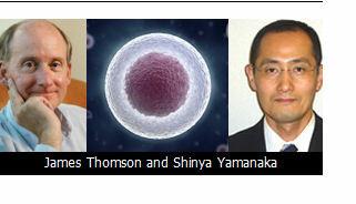 James Thomson and Shinya Yamanaka